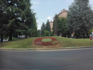 Ufficio Verde Comune Di Bologna : Bologna prati di caprara chi firmerà l abbattimento di un bosco